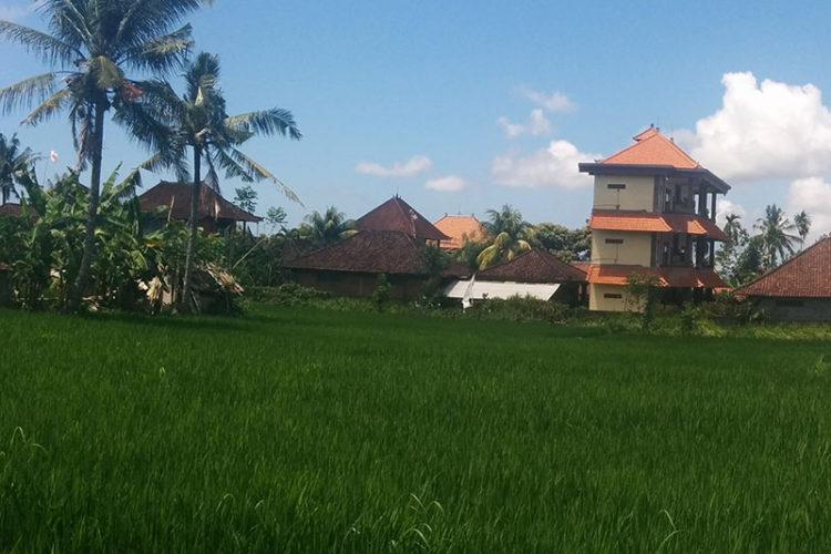 Bali (Conclusion)